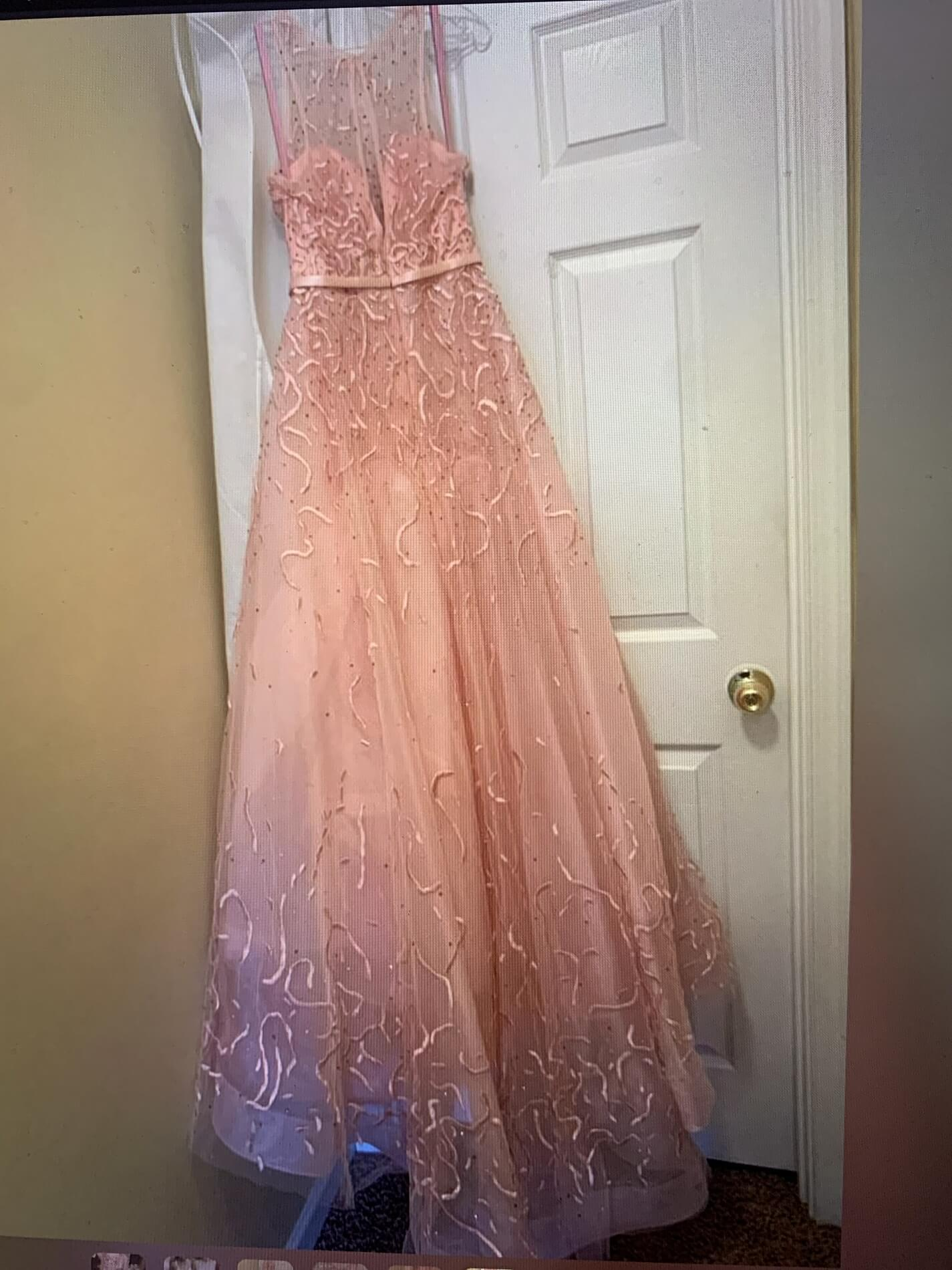 Blush Pink Size 6 Tulle Fitted Train Dress on Queenly