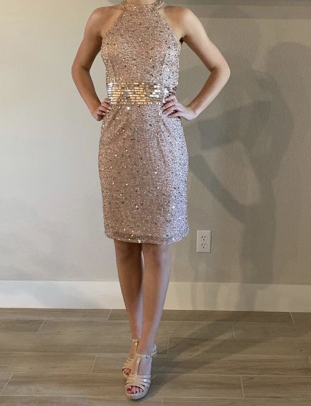 Ashley Lauren Pink Size 2 Halter Party Cocktail Dress on Queenly