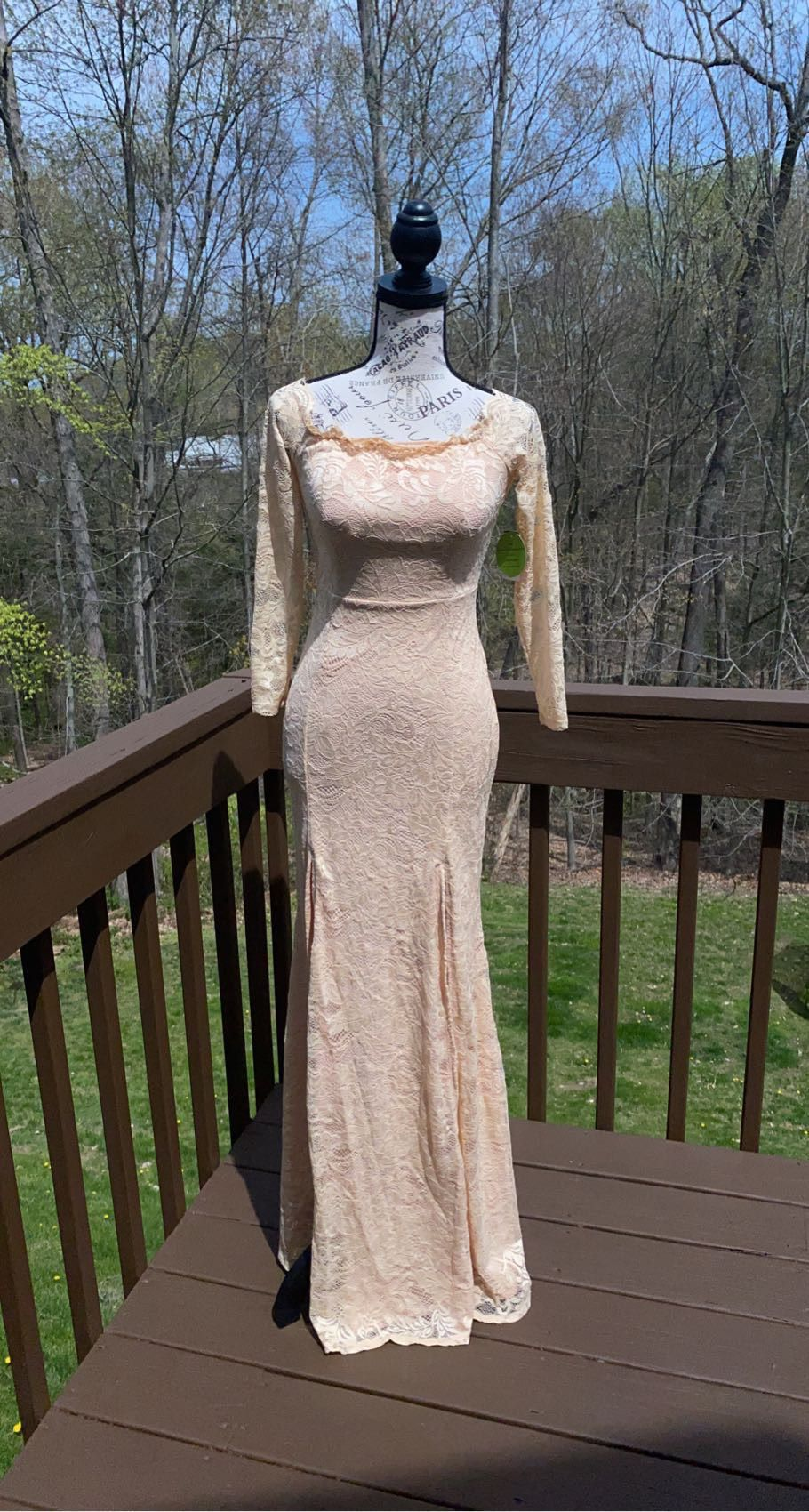 Windsor Nude Size 4 Lace Straight Dress on Queenly