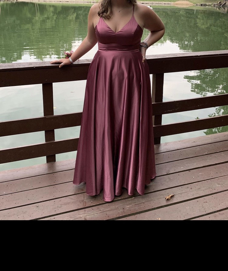 Windsor Pink Size 16 Straight Dress on Queenly