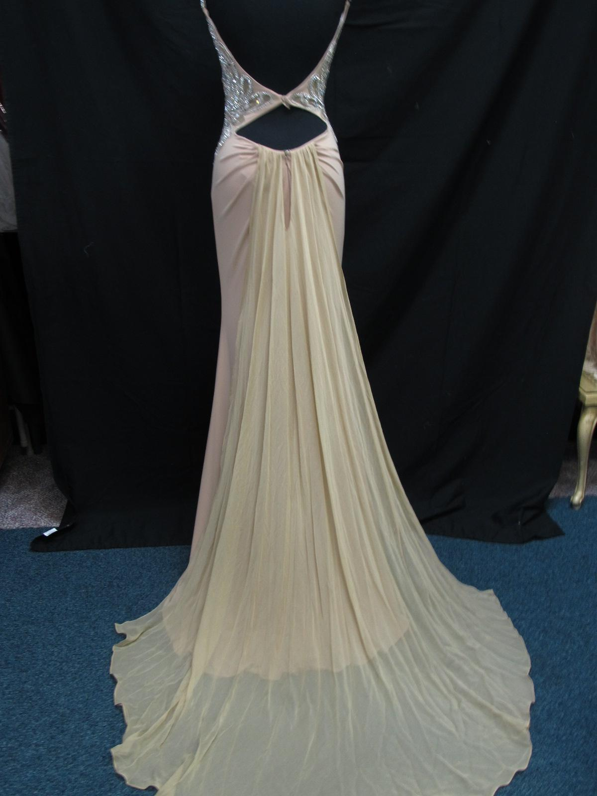 Style 11030 Sherri Hill Nude Size 2 Train Tall Height Straight Dress on Queenly