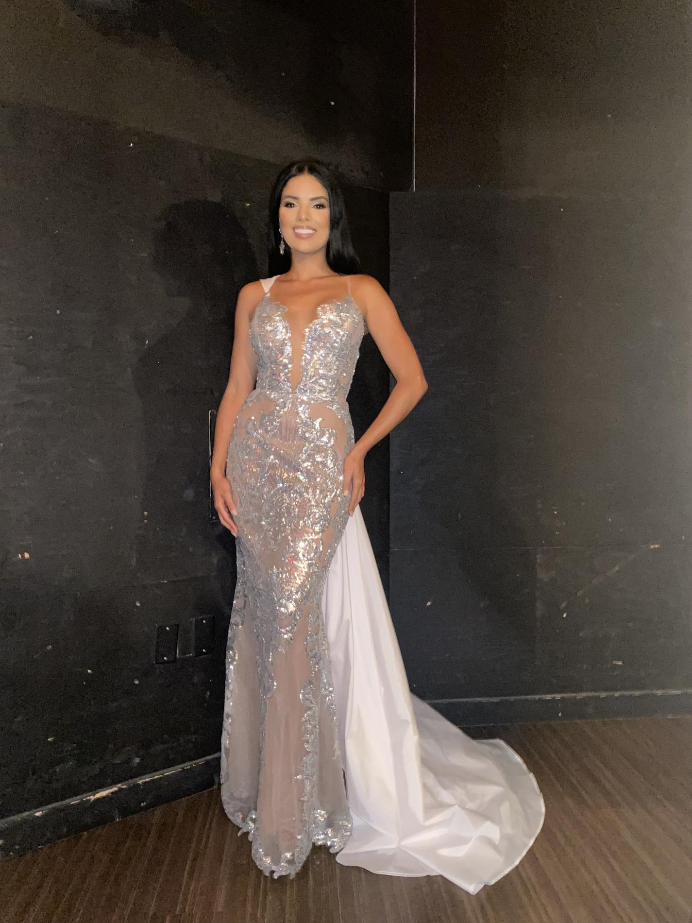 Fernando Wong Silver Size 2 Plunge Sheer Tall Height Train Spaghetti Strap Mermaid Dress on Queenly