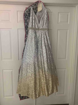 Clarisse Silver Size 14 Ball gown on Queenly