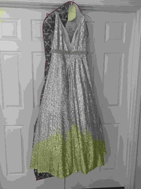 Queenly size 14 Clarisse Silver Ball gown evening gown/formal dress