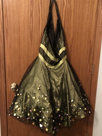 Princess Collection Green Size 6 Ball gown on Queenly