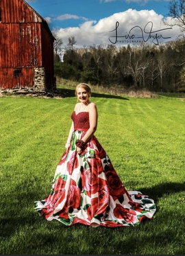 Sherri Hill Red Size 4 Corset Beaded Ball gown on Queenly