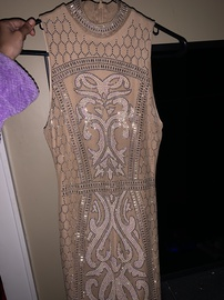 Nude Size 2 Straight Dress on Queenly