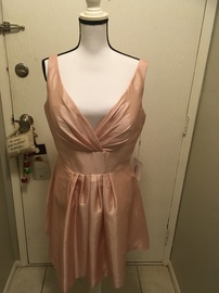 JJs House Pink Size 14 Homecoming Plus Size A-line Dress on Queenly