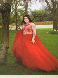 Queenly size 18  Red Ball gown evening gown/formal dress