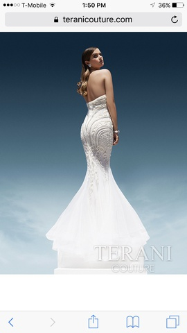 Terani Couture White Size 8 Pageant Mermaid Dress on Queenly