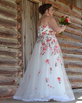 Multicolor Size 16 Ball gown on Queenly