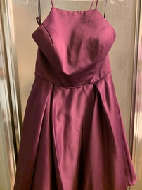 Queenly size 14 Poly USA Purple Ball gown evening gown/formal dress