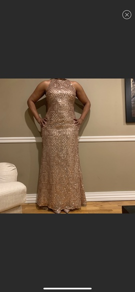 Gold Size 14 Straight Dress on Queenly