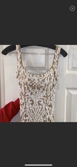 Queenly size 2 Sherri Hill Nude Train evening gown/formal dress
