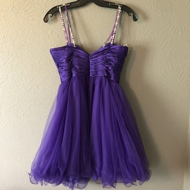 Sherri Hill Purple Size 2 Homecoming Sequin A-line Dress on Queenly