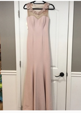 Pink Size 6 Train Dress on Queenly