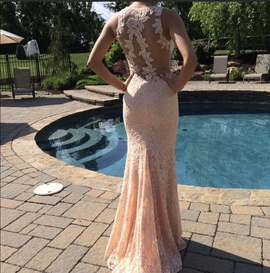 Nude Size 00 Straight Dress on Queenly