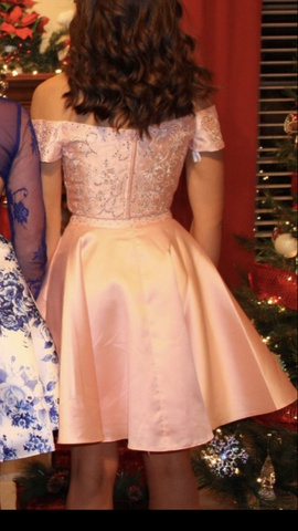 Pink Size 00 Straight Dress on Queenly