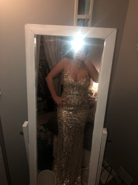 Windsor Silver Size 6 Ball gown on Queenly