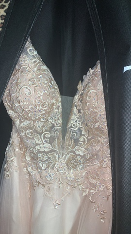 Queenly size 12 Jovani Nude Ball gown evening gown/formal dress