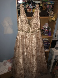 Nude Size 18 A-line Dress on Queenly