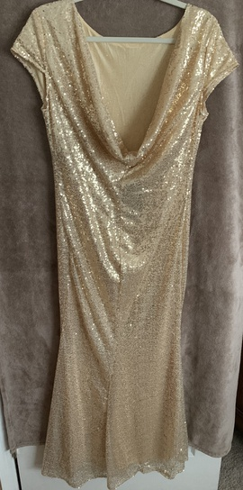 Gold Size 10 Straight Dress on Queenly