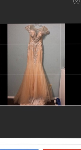 custom Gold Size 2 Pageant Plunge Lace Mermaid Dress on Queenly