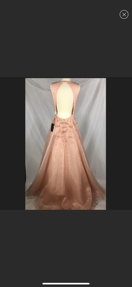 Terani Couture Orange Size 8 Prom Ball gown on Queenly