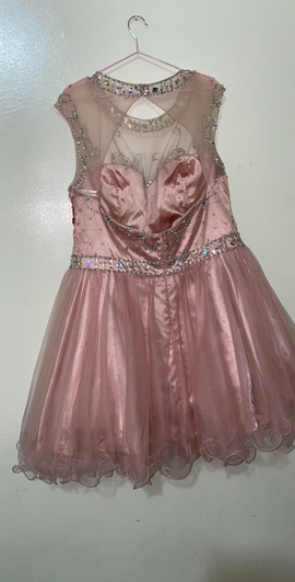 May Queen Pink Size 20 Flare Halter Plus Size Ball gown on Queenly