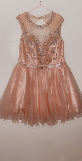 Queenly size 20 May Queen Pink Ball gown evening gown/formal dress