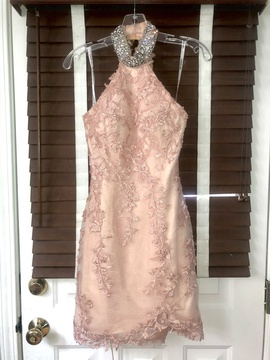Sherri Hill Pink Size 2 Halter Lace Straight Dress on Queenly