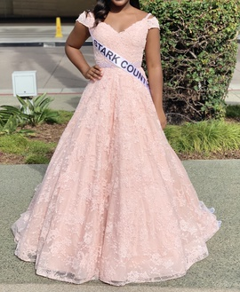 Sherri Hill Pink Size 2 Lace Shiny Ball gown on Queenly