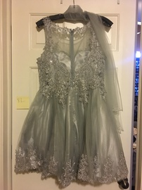 Silver Size 14 A-line Dress on Queenly