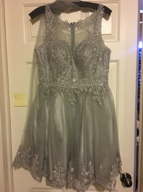 Queenly size 14  Silver A-line evening gown/formal dress