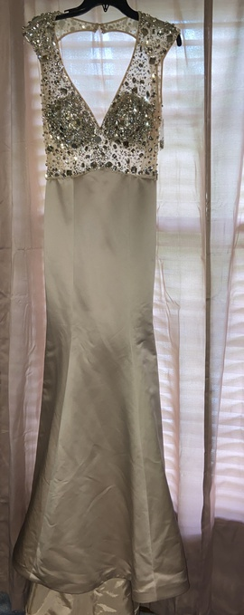 Ashley Lauren Nude Size 6 Sheer Tall Height Train Dress on Queenly
