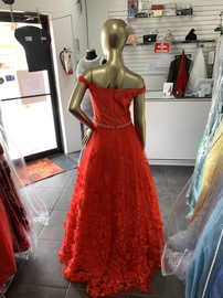 Terani Couture Red Size 4 Prom A-line Dress on Queenly