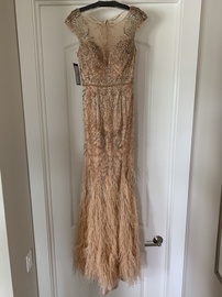 Terani Couture Pink Size 4 Feathers Pageant Prom Mermaid Dress on Queenly