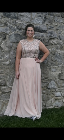 Nude Size 18 Straight Dress on Queenly