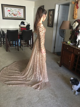 Gold Size 0 Train Dress on Queenly