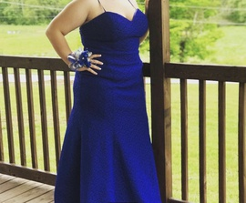 Queenly size 18 Blush Blue Mermaid evening gown/formal dress