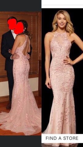 Sherri Hill Pink Size 4 Sheer Lace Train Dress on Queenly