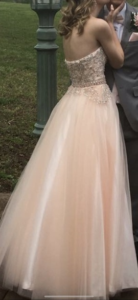 Morrell Maxie Pink Size 2 Sweetheart Ball gown on Queenly