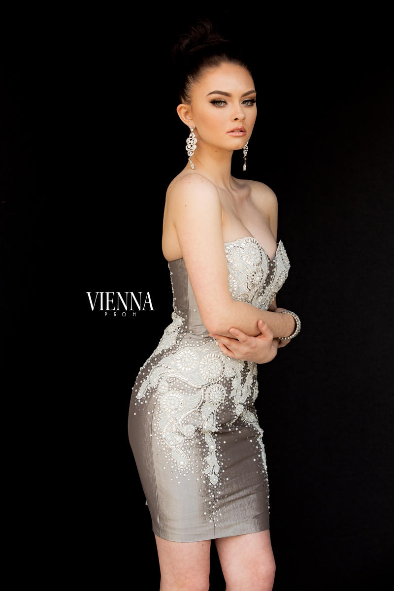 Style 6030 Vienna Silver Size 2 Tall Height Cocktail Dress on Queenly