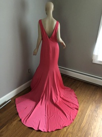 Pink Size 16 Train Dress on Queenly
