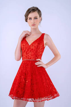 Queenly size 0 Nina Canacci Red Cocktail evening gown/formal dress