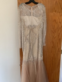 Terani couture Pink Size 16 Long Sleeve Plus Size Mermaid Dress on Queenly