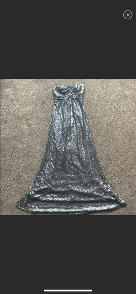 Queenly size 0 Christina Wu Silver Straight evening gown/formal dress