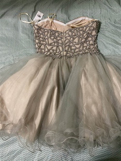 Terani Couture Multicolor Size 8 Homecoming Nude Ball gown on Queenly