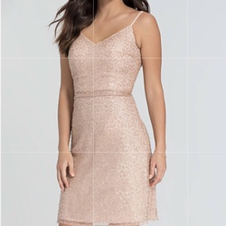 Kleinfeld Nude Size 10 Sorority Formal Wedding Guest Cocktail Dress on Queenly