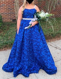 Queenly size 14  Blue Ball gown evening gown/formal dress
